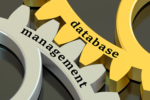 role_of_database_management_system_in_IT