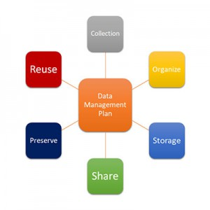 Get Ahead with the Right Data Management Plan!